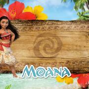 Набор для оформления в стиле: Моана
