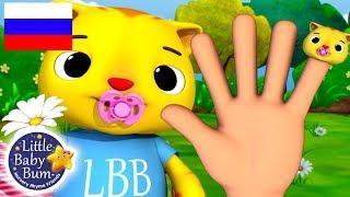 детские песенки   Семья пальчиков   мультфильмы для детей   Литл Бэйби Бум