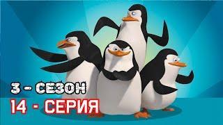 Пингвины из Мадагаскара - 3 СЕЗОН / 14 СЕРИЯ (Новые серии - 2019) Мультфильм смотреть !