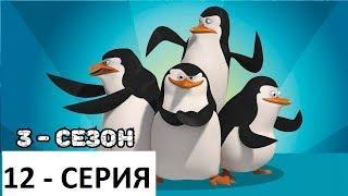 Пингвины из Мадагаскара - 3 СЕЗОН / 12 СЕРИЯ (Новые серии - 2019) Мультфильм смотреть !