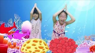 Детская Акула | Петь И Танцевать! | Животные Песни | Детские Песни И Детские Стишки | Lala Kids Tv