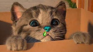 Мой маленький милый котенок заболел? Мультик игра про мимишного котика для детей