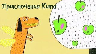 Везуха! - Приключения Кита | Мультфильм для детей и взрослых