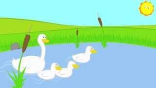 Детские песни - про маленьких утят - мультики для самых маленьких