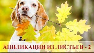 Поделки из сухих листьев для детей ☂ Осенние аппликации