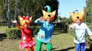Аниматоры 3 кота. Детские праздники от ART-HAPPY (www.art-happy.ru)